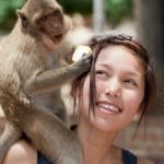 Lassen Sie sich einen Affen aufbinden?