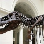 Dinosaurier wiederbelebt?