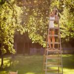 Mitarbeiter im Love – it Modus gefährden den Erfolg